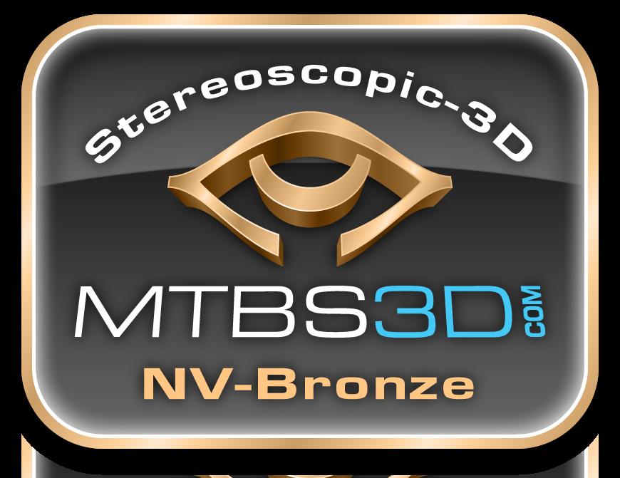 NVIDIA Bronze Logo