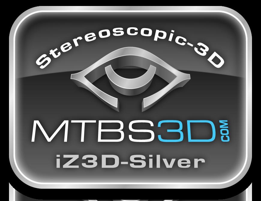 iZ3D Silver Logo