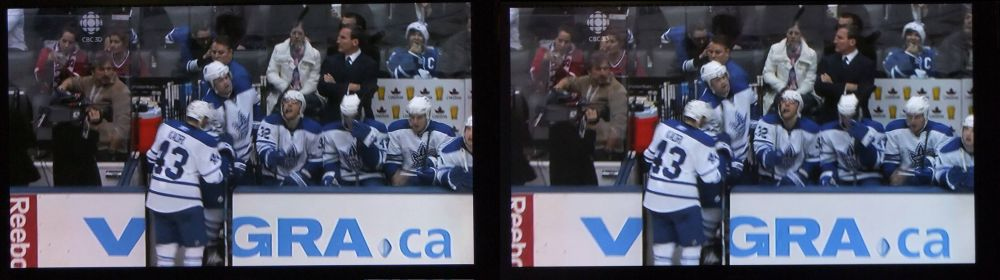 The Winning Toronto Maple Leafs in 3D!